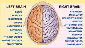 using-both-halves-of-the-brain.jpg
