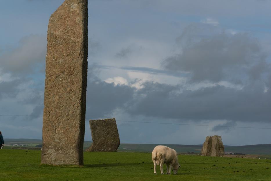 Orkney-13.jpg